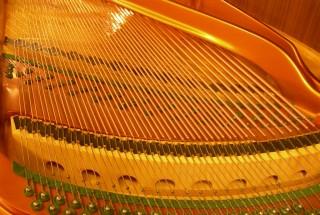 ベーゼンドルファーの交差弦 ピアノが語ってくれたもの-その20