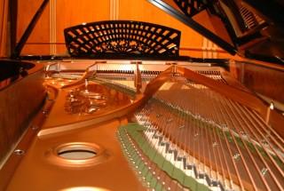 プレイエル コンサートグランドピアノ ピアノが語ってくれたもの-その22