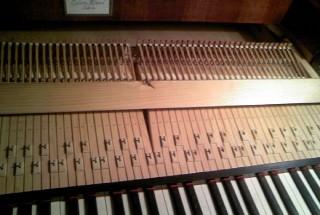 マエストロ堀ピアノフォルテのアクション