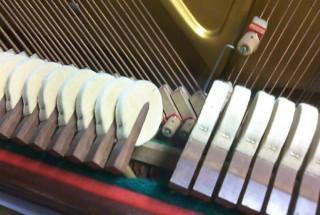 神田川右岸のピアノ工房のベヒシュタイン8