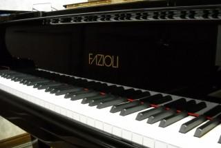 出会い 輸入ピアノ その5 ファツィオリ