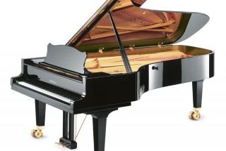 グロトリアン コンサートロイヤルを弾いてみませんか?