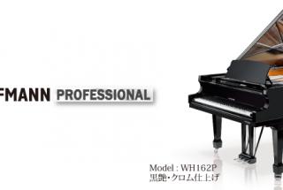 ■輸入ピアノ ベヒシュタインが設計・製造するホフマン -2