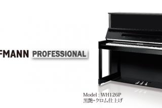■輸入ピアノ ベヒシュタインが設計・製造するホフマン -3
