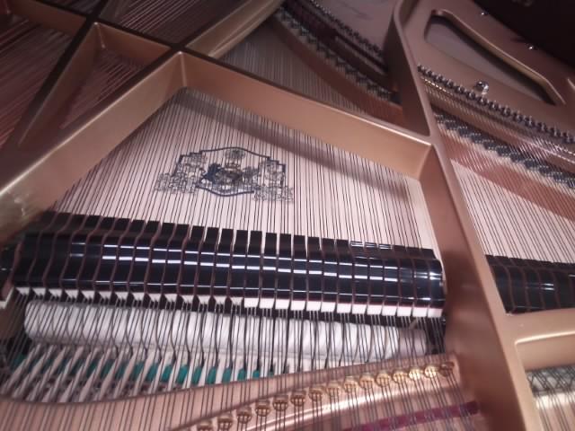 グロトリアン コンサートロイヤル ピアノパッサージュ