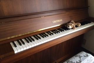 グロトリアン110の納入調律に行った。  輸入ピアノ GROTRIAN