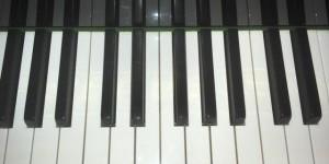 20世紀初頭のベヒシュタイン&スタインウェイ その9 鍵盤