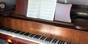ベヒシュタイン L-165 ピアノが語ってくれたもの レビュー編