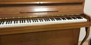 ベヒシュタイン 12b  ピアノが語ってくれたもの レビュー編