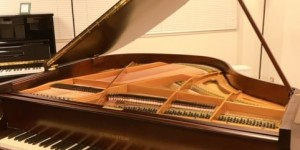 C.BECHSTEIN S-145 輸入ピアノ ピアノパッサージュ 入荷しました。