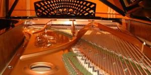 ピアノが語ってくれたものシリーズ ピアノの響板特性とハーモニー調律 (前編)