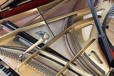 ピアノが語ってくれたものシリーズ  ピアノの響板特性とハーモニー調律 その2 低音域の謎 響板インハーモニシティー