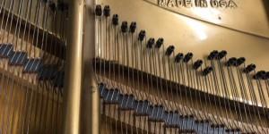 ピアノが語ってくれたものシリーズ ピアノの響板特性とハーモニー調律  その14 響板同期と高音セクション